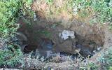 Rottura della rete fognaria in via Galvani