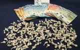 Le dosi e i soldi sequestrati al tunisino