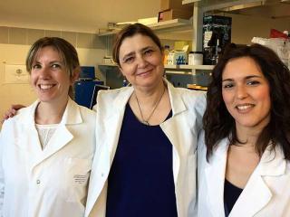 Le dott.sse Claudia Volpi e Giada Mondanelli con la prof.ssa Ursula Grohmann (al centro)