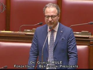 L'Onorevole Giorgio Mulè