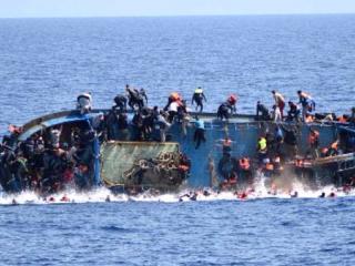 Migrantine scafusti.jpg