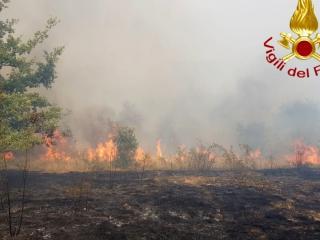 incendio_pantano-2.jpg