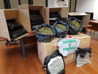 La marijuana sequestrata delle Fiamme Gialle