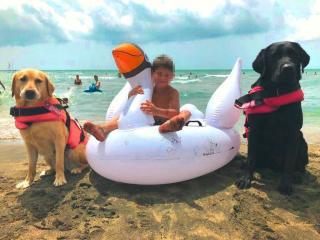 Il bimbo salvato con i cani Wendy e Kobe (foto pagina Facebook Sics)